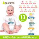 【メール便可】アニマル 赤ちゃんステッカー 動物 写真 PEARHEAD ペアヘッド ベビー ベリーステッカー / 月齢ステッカ…