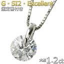 【限定1本限り】ダイヤモンド ネックレス 一粒 1.2カラット プラチナ Pt900 大粒 ダイヤネックレス 一点留 Gカラー SI…