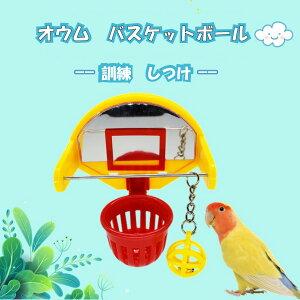 ★大還元クーポン配布中!★父の日 母の日 小鳥 インコ オウム バスケット 訓練 学習 遊び ストレス解消 運動 送料無料