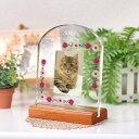高級ガラス ペット位牌「アーチ型モニュメント フラワーガーデン」ペットメモリアル/ ペットの仏壇仏具 写真 名入れ …