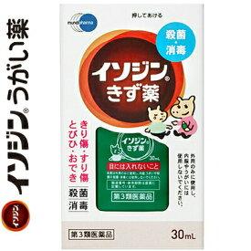 塩野義製薬 イソジンきず薬 30mL (第3類医薬品)