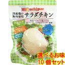 内野家 ウチパク【選べるお味】 10個 無添加 サラダチキン 内野家 uchipac 高たんぱく質[国産鶏の胸肉使用 常温で長…