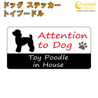 Toy poodle toy poodle in House sticker print type