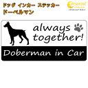 Dogincar14 01
