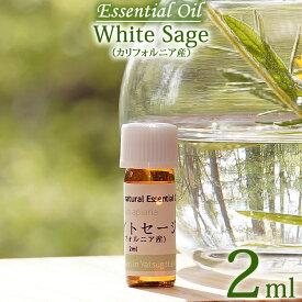 【ホワイトセージ(カリフォルニア産) 2ml】エッセンシャルオイル(精油) 無農薬/無添加/オーガニック White sage, Essential Oil, Salvia apiana