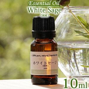 【ホワイトセージ(国産・自然栽培) 10ml】エッセンシャルオイル(精油) 無農薬/無添加/オーガニック White sage, Essential Oil, Salvia apiana
