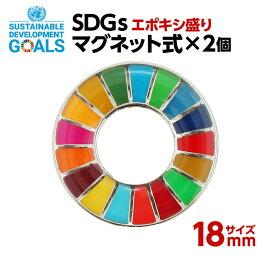 SDGS ピンバッジ 2個入り(18mmサイズ・マグネットタイプ)(エポ盛)#008