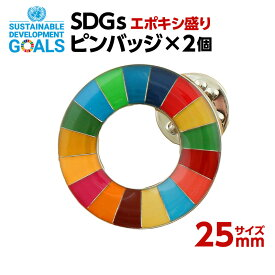 SDGS ピンバッジ 2個入り(25mmサイズ)(エポ盛)#002