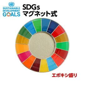 SDGS ピンバッジ 1個入り(25mmサイズ・マグネットタイプ)(エポ盛)#004