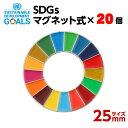 【送料無料】SDGS ピンバッジ 20個入り (マグネットタイプ)