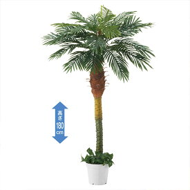デラックスパームツリートロピカルディスプレイにぴったりな人工樹木です。ココナッツの付いていないヤシの木です。エントランスや広い店舗にぴったり!ヤシの木 フェイクグリーン 立ち木 パームツリー ハワイアン 大型 おしゃれ