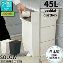【送料無料】ゴミ箱 ペダル 45L SOLOW ペダルオープンツイン ごみ箱 ふた付き 2個セット|ソロウ 45リットル 分別 キ…