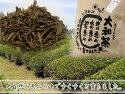 藤井さん家の大和茶(番茶のほうじ茶)280g【農薬不使用】