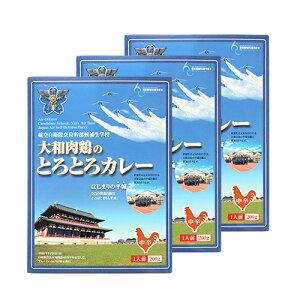 航空自衛隊奈良幹部候補生学校 大和肉鶏のとろとろカレー 3個セット