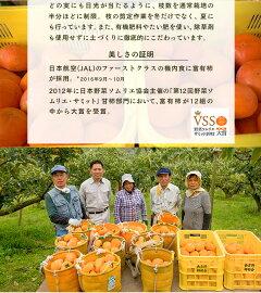 あま〜い!!『甘柿の桜燻製』と『甘柿のセミドライ』のセット