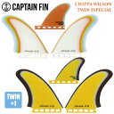 CAPTAIN FIN キャプテンフィン フィン CHIPPA WILSON TWIN ESPECIAL SINGLE TAB チッパ ウィルソン ツイン エス...
