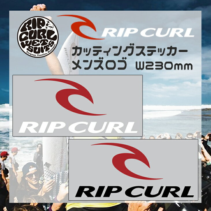 日本正規品 RIPCURL(リップカール) ステッカー 品番:C01-003 W230mm メンズロゴステッカー カッティング ダイカット サーフィン シール