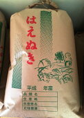 【新米】特別栽培米はえぬき平成29年新米<玄米5kg>