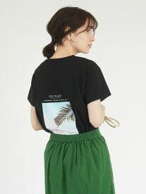 【Green Parks】COZYフォトPtTシャツ【 2,000円(税込)以上で 送料無料 】 ブラック ブラウン カーキ プラス プリント ラフ ムード 着こなし メイク ニュアンス たっぷり 個性 ゆとり シルエット 着心地 雰囲気 今季