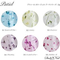プティールカラージェルブーケシリーズB1〜B62g