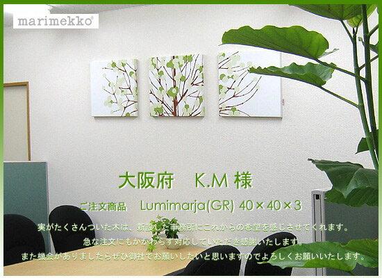 マリメッコ (marimekko) ファブリックパネル ファブリックボード Lumimarja(GR) 【北欧 ファブリック】[ご注文size:W40cm×H40cm×3set]