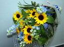 ヒマワリとデルフィニュームの花束【生花 花束】フラワーギフト 花の贈り物