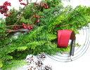 黄金ヒバのクリスマスリースキット【切花】【資材】【クリスマスリース手作りキット】【生花】