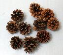 松笠 きなり 10ヶ入り 【リース】【クリスマス】【正月】【資材】松かさ 松ぼっくり 木の実 種類
