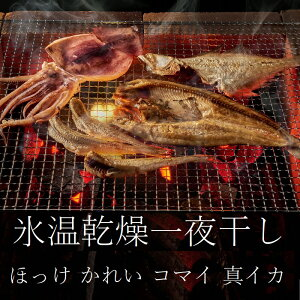 氷温乾燥一夜干しセット 開きほっけ 宗八かれい こまい 真いか 旭川キョクイチ ふっくら 柔らかな干物 魚本来の旨味 グリル弱火で両面焼 夕食の一品 日本酒 居酒屋 干物