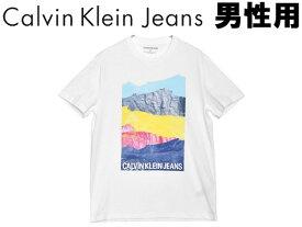 カルバンクラインジーンズ アンディ・ウォーホル スタック マウンテン S/S ティー 男性用 CALVIN KLEIN JEANS ANDY WARHOL STAC MOUNTAIN SS TEE 41T0149 メンズ 半袖Tシャツ (20380201)