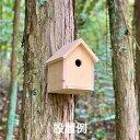 鳥の巣箱 / 夏休み 工作キット 自由工作 自由研究 手作り 工作 低学年 高学年 小学校 木工 野鳥 観察 送料無料 東濃…