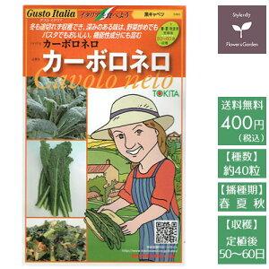 野菜のタネ カーボロネロ(キャベツ) イタリアの珍しい種を送料無料でお届け!!