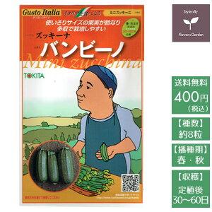 野菜のタネ バンビーノ(ズッキーニ) イタリアの珍しい種を送料無料でお届け!!