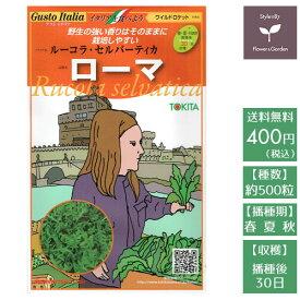 野菜のタネ ローマ(ワイルドロケット) イタリアの珍しい種を送料無料でお届け!!