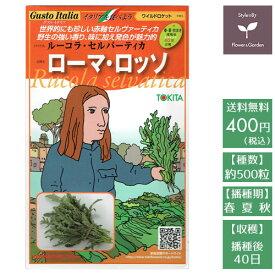 野菜のタネ ローマ・ロッソ(ワイルドロケット) イタリアの珍しい種を送料無料でお届け!!