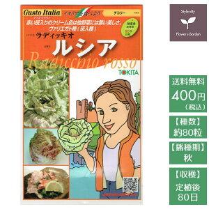 野菜のタネ ルシア(ラディキオ) イタリアの珍しい種を送料無料でお届け!!