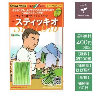 野菜のタネ スティッキオ(スティックフェンネル) イタリアの珍しい種を送料無料でお届け!!