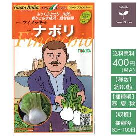 野菜のタネ ナポリ(フローレンスフェンネル) イタリアの珍しい種を送料無料でお届け!!