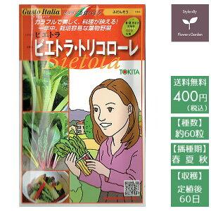 野菜のタネ ビエトラ・トリコローレ(ふだんそう・スイスチャード) イタリアの珍しい種を送料無料でお届け!!
