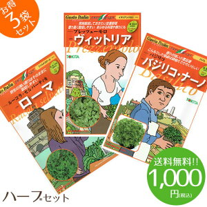 【1000円ポッキリ】野菜のタネ クッキングハーブセット イタリアの珍しい野菜のタネ3種類を送料無料でお届け!!