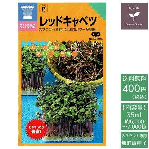スプラウト 種 レッドキャベツ 話題のタネを送料無料でご自宅までお届け!