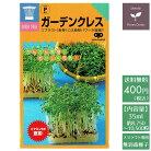 スプラウト種ガーデンクレス(胡椒草)話題のタネを送料無料でご自宅までお届け!