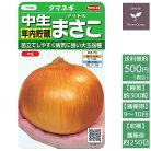 野菜の種実咲野菜3975中生年内貯蔵マサコ