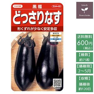 野菜の種 実咲野菜0200 どっさりなす 黒福