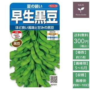 野菜の種 実咲野菜7377 早生枝豆(黒豆) 夏の装い サカタのタネ