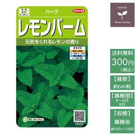 野菜の種 実咲ハーブ8087 ハーブ レモンバーム サカタのタネ