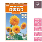 花の種実咲花7540ひまわりサンゴールド