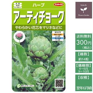 野菜の種 実咲ハーブ8091 アーティチョーク サカタのタネ