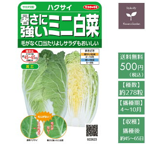 野菜の種 実咲野菜2623 暑さに強いミニ白菜タイニーシュシュ サカタのタネ