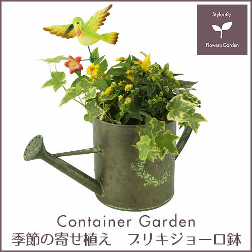 季節の寄せ植え ギフトに最適♪ブリキジョーロ鉢【送料無料】